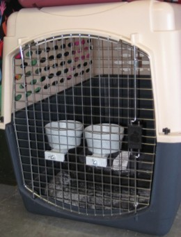 Dog Crate Accessories: Food & Water Cups