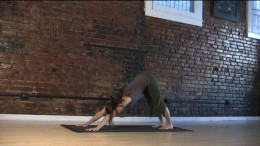 Downward Dog - Be sure to keep the lower back long. Bend your knees if you have to. Your heels don't have to touch the floor.