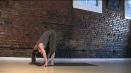 Forward Bend - It's critical that you don't round the lower back or pull yourself further forward than your body wants to go. If your hands don't reach the floor, put them on a chair or desk.
