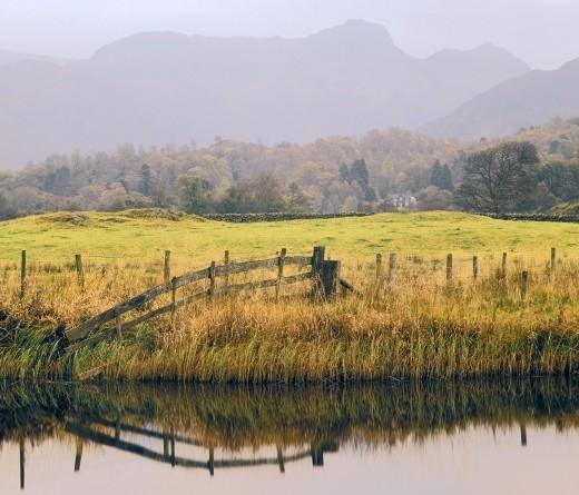 Bucolic Hardyesque moorland