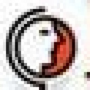 Disholidays profile image