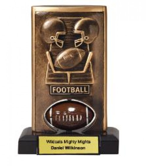 Fantasy Football Trophies - 5 Great Award Ideas