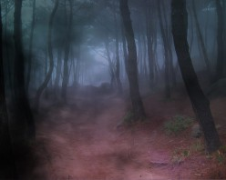 Online Dating: The Warning Signs For Women
