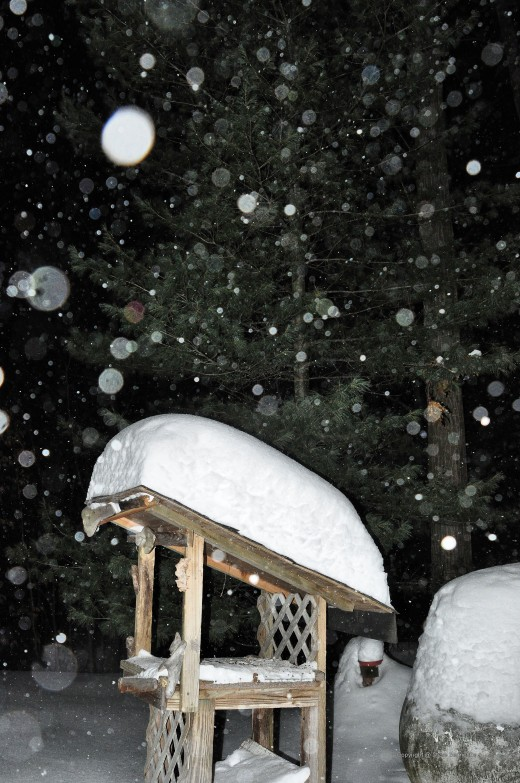Snow continues to fall tonight piling up on a platform bird feeder.