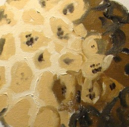 Texture painting of a custard apple