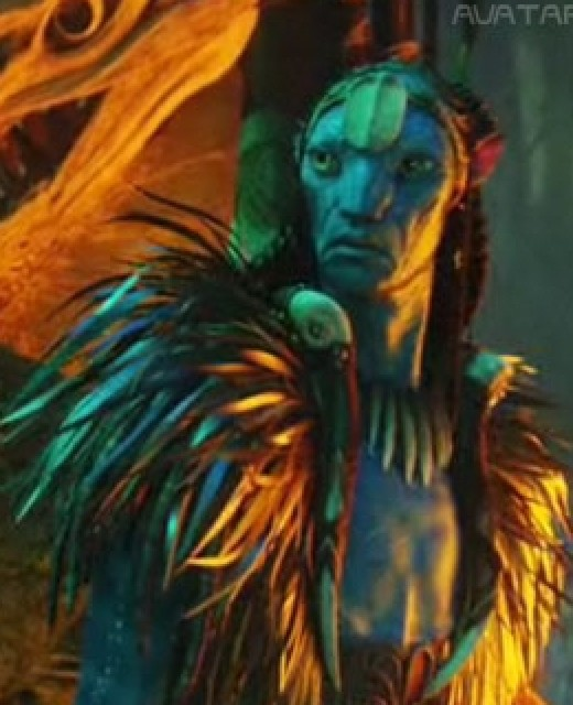 Eytucan is the chef of the Na'vi and Neytiri's father.