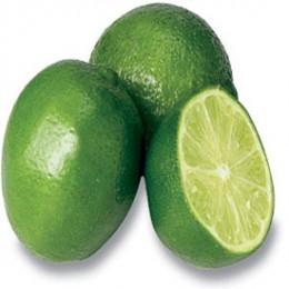 What are Citrus Essential Oils?
