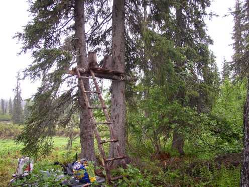 This is one of the tree stand I use to hunt black bear.