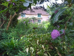 Thomas Hardy's cottage, Lower Bockhampton, Dorset. Image Credit: robskinner