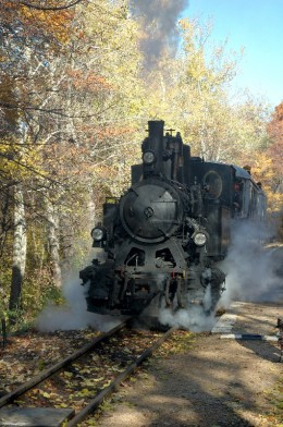 Trains were used to log the Okefenokee