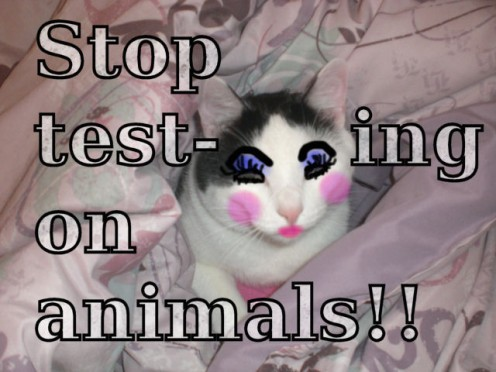 animal testing cruelty pictures. don#39;t do animal testing