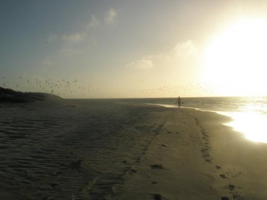 Walking along the coast in sunrise or sunset...
