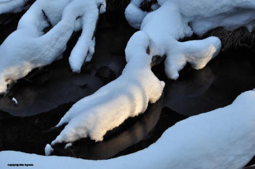 Snow on logs and limbs in the creek give them a lumpy look.-