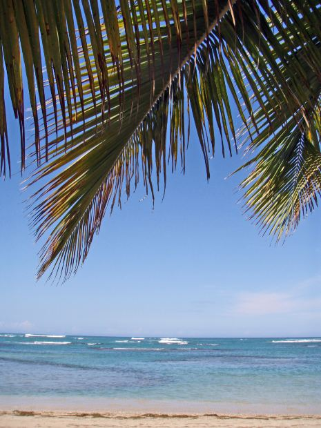 best caribbean things to do, dorne's, morguefile.com