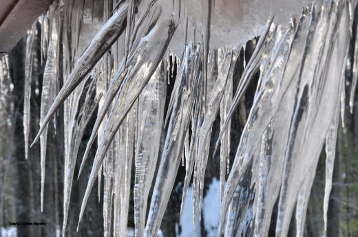 The mass of icicles is torquing as the snow slumps.How long until they tumble down?
