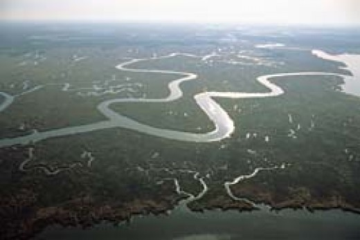 The aerial view of River Amazon