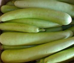 Various Health Benefits of Bottle Gourd (Doodhi/Lauki)