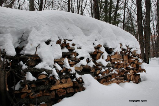 Next year's wood is stacked and holding up a ceiling of snow.