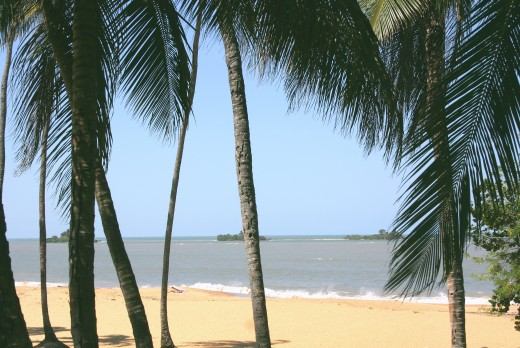 One of Guyana's beaches.