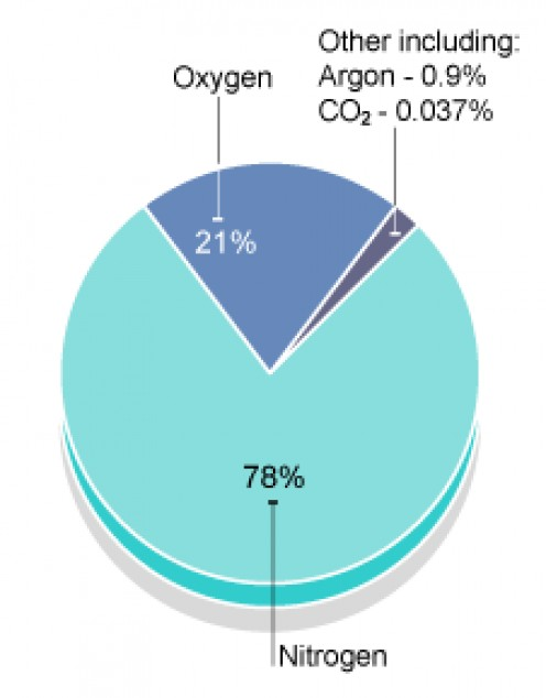 Earth's WHOLE atmosphere is mostly nitrogen and oxygen.