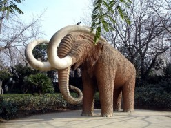 The mammoth was not so lucky, nor was the mastodon