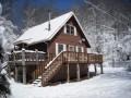 Pet Friendly Cabin Rentals in Asheville, North Carolina