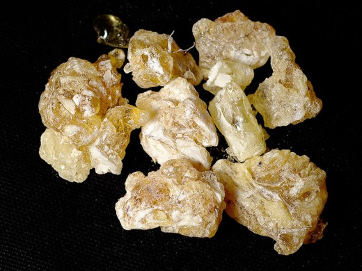 Boswellia sacra resins, frankincense