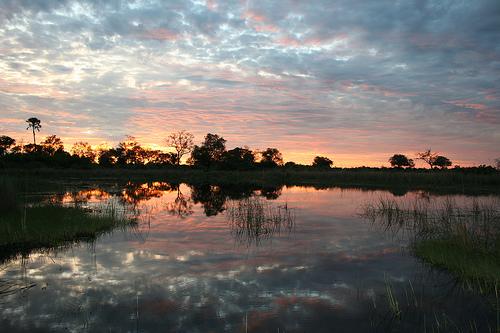 Okavango delta Creative commons