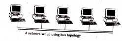 Network Topology and Types of Network Topology