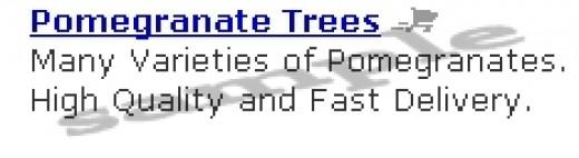 Pomegranate Trees produce Pomegranate Juice