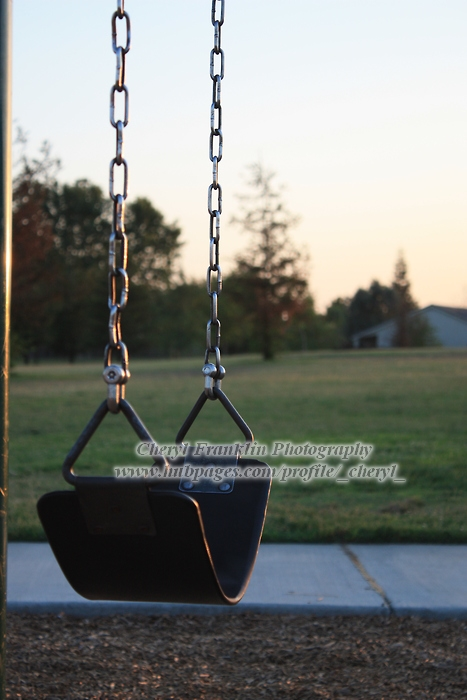 A swing at our park.