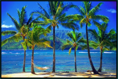 Hawaii: http://www.hawaiipictures.com/