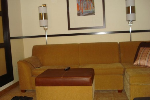 Pull Out Couch in Sitting Area