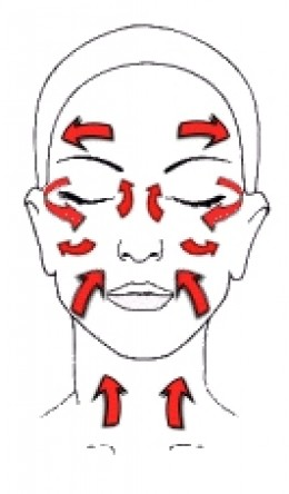 The direction of the facial massage should follow the arrows in this diagram.