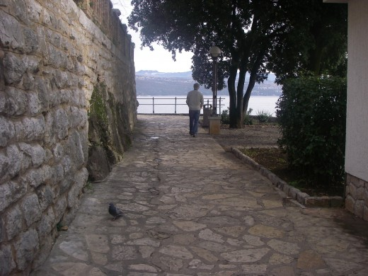 Pathways follow the rock formations, shaded by trees and with views of the sea