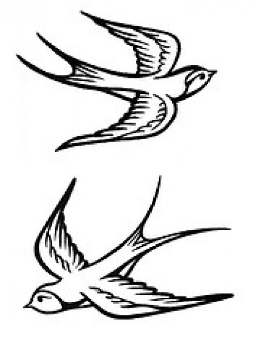 swallow tattoo designs 11