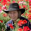 Lexi Sundell profile image