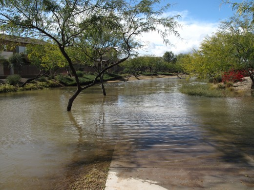 Arizona is underwater. These Neighborhood greenbelt areas double as common areas and drainage pathways. This one is completely underwater.