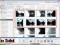 How To Make A Promotional Video For Free With Picasa