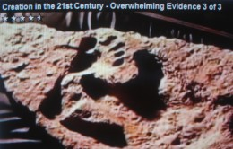 Fossil HUMAN footprint and DINOSAUR footprint.