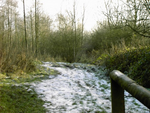 This meadow looks barren during winters icy grip.