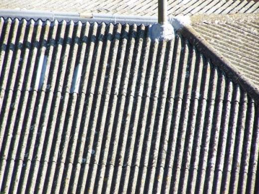 asbestos exposure causes mesothelioma, niente0, morguefile.com