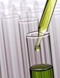 Common Methods of Adulterating Essential Oils