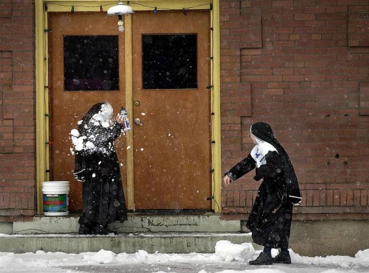 Seems everyone loves a good snowball fight! - twistedsifter.com