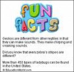Fun, Weird Truths of our World