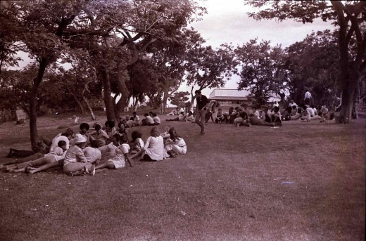 On the lawns at Phoenix Settlement. Photo Tony McGregor