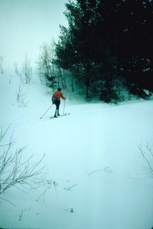 Cross-country skier skiing past a wooded area in the Canadian Ski Marathon.