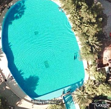 In a pool with a dolphin?