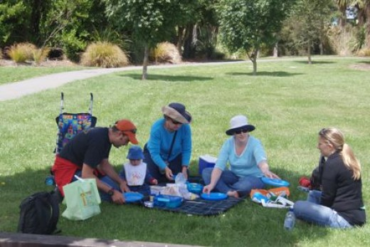 One idea of respite is a Picnic in the Park