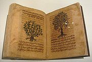 Arabic Translation of Greek Scholar Discorides